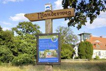 """naturSchätze / Wir öffnen für Sie unsere """"Schatzkammer Natur"""". Treten Sie ein und entdecken Sie Seen wie funkelnde Edelsteine, einen Waldreichtum, wie ihn keine andere Region Schleswig-Holsteins bieten kann, und majestätische Tiere wie den Seeadler. Im Naturpark Lauenburgische Seen, am Schaalsee, an der Elbe oder im Sachsenwald warten ganz unterschiedliche Naturerlebnisse auf Sie!"""