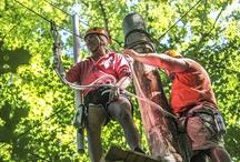 Adventureworks, Nashville, TN / Adventureworks Adventure Park! Nashville's leader in aerial trekking, canopy zip line tours and team building!