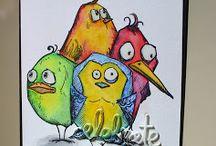 birds crazy
