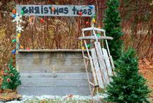 Photography: Christmas / by Amy Stull