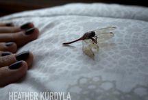 Heather Kurdyla / http://photoboite.com/3030/2011/heather-kurdyla/