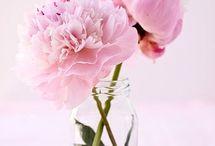 Blooming decoratie