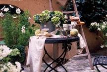 Garden TO DO
