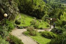 Garden HH