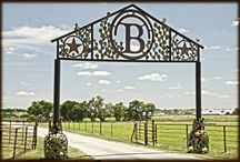 Life On the Beaumont Ranch / Beaumont Ranch is an 800 acre working cattle ranch, specializing in corporate and private client entertainment, with a herd of Texas longhorns and horses, two 20,000 square foot event spaces, guest cabins and luxury suites, all with a real Texas ranching experience. Nestled in the hills of beautiful Grandview, Texas the location is 30 minutes south of the Dallas, Fort Worth metroplex.   / by Beaumont Ranch