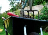 Organic Gardening Tips / Organic Gardening can be simple and grown in very little space! / by Halle Cottis @ Whole Lifestyle Nutrition