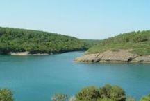 Sinop Gezilecek Yerler / Sinop gezilecek yerler ve sinop görülmesi gereken yerler ile ilgili görselleri pano da bulabilirsiniz.