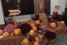 Halloween / Decorate