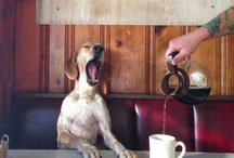 Cafeaua de dimineata