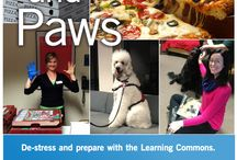 Pizza and Paws / De-stress and prepare for your final exams with the Pizza and Paws event.  There will be free pizza, and extra tutoring on hand, as well as therapy dogs to ease final exam stress.