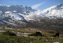Asturias Paisajes - España / Hermosos paisajes de en sueño en #Asturias. Andando por bellos rincones de #Asturias - España #paisajes #viajar #Spain