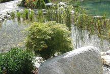 Natuursteen, Keien & Rotsen / Sierstenen in inspirerende kleuren & vormen. Met een breed assortiment aan stenen/ keien en rotsen bieden wij voor iedere tuin een passende oplossing. U kunt bijvoorbeeld de paden in uw tuin een extra accent geven. Brokken hebben over het algemeen een robuuste, stoere uitstraling, keien ogen wat zachter, dit komt door de rondere vorm van de steen.
