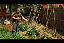 Permaculture video's