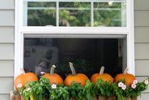 Halloween Deckorations