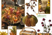 Autumn Harvest / Harvest time evokes family, hearth and home and sets the stage for the holidays to follow. Abundance and warmth emanate from the season- which truly deserves the chance to shine! / by J Schwanke