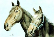 Horses or Equine - my paintings / Horses or Equine oil paintings, oils on canvas