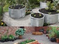 Vegie Gardens
