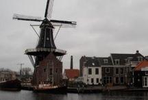 Haarlem / Place of birth