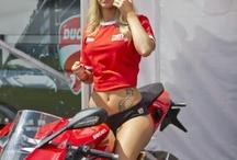 ducati / moto italienne