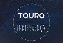 Signo Touro