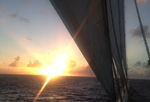 BVI Star Clippers / Wow...what a place.  Star Clippers Sail through the BVI and nearby islands
