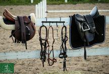 Équipement classique / La Sellerie de la Chambrière offre une gamme complète d'équipement classique.