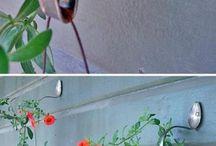 Fleurs / Sortes de fleurs et idée de décorations extérieurs d'été.