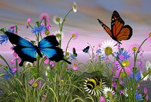 Butterflies / by Liz Dyer