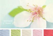 Colours ...