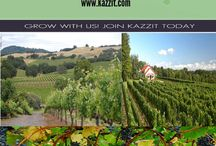 OHIO Wineries / The majority of wine cultivated and consumed from wineries in Ohio is based on the Catawba fruit.  http://www.kazzit.com/content/ohio-wineries.html