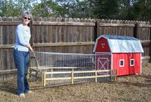 Chicken Coop {ideas} / by Tabitha