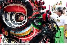 China / by Ann Kilzer