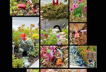 Fairies and Fairy Gardens / all things fairy :)