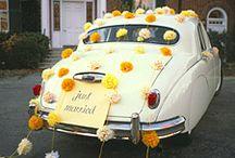 Wedding Ideas / by Sarah Vidulich