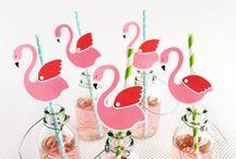 flamingos partys