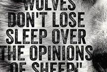 Motivation & Inspiration / Motivational & Inspirational Quotes