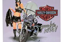 Girl's Harley