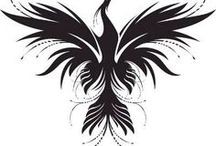 ANKA BIRD