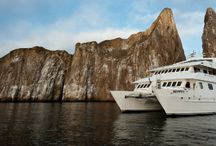 Galapagos Journey Cruise Tour - Ecuador / Discover the beauty and wildlife spectacle of the Galapagos Islands through the Galapagos Journey Cruise in manner that replicates what you will feel as you encounter the wildlife.