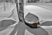 winter / Snow and solitude