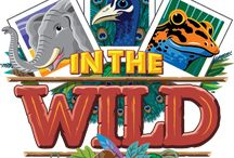 VBS 2019 In the Wild