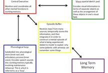 The structure of the memory