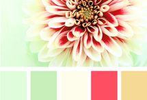 Color Palettes I like / by Katie Hennenfent