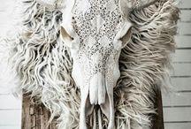 Cabeza animal ☆ / Inspiración en las cabezas de animales