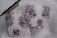 ezaz/ my draw