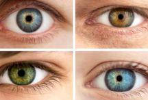 Zadbaj o kondycję oczu! / Spędzając długie godziny przed monitorem komputera, nasz wzrok jest narażony na zmęczenie, które objawia się łzawieniem, pieczeniem a nawet bólem. W skrajnych przypadkach prowadzi to do powstawania schorzeń oczu. Jak poradzić sobie z tym problemem, skoro coraz więcej czynności zawodowych wymaga wpatrywania się w ekran?