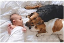 Newborns and pets / Pose ideas for incorporating pets with newborn photography