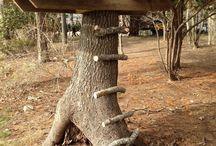Plateforme arbre