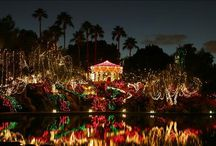 Holiday Mountain at Christmas Time / Nothing in Gilbert compares to our Holiday Mountain around Christmas!