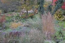 Garten Groene